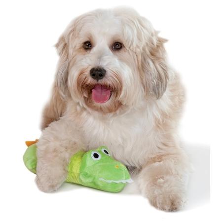 Stuffing free Krokodil