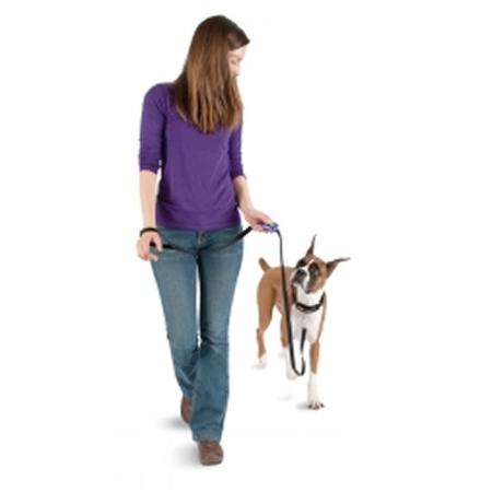 PetSafe klicker Clik-R Clip, att fästa på koppel