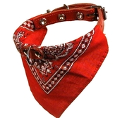 Halsband med snusnäsduk Röd