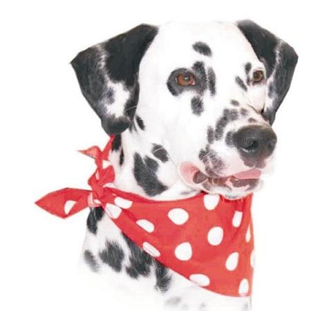 Röd prickig scarf